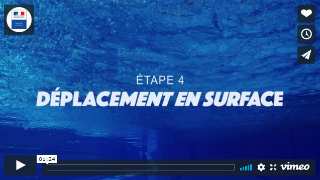 Il s'agit de la première image du quatrieme clip du Ministère des Sports sur l'aisance aquatique où l'on voit un fond de piscine
